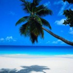 Cheap last minute flights to Cancun in Mexico from Germany from €226!