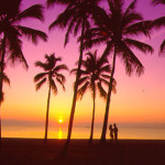 USA - Cheap return flights from UK to Florida from £260!