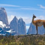 Chile: open jaw flights Italy - Santiago - London £344!