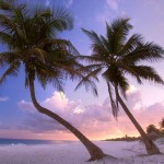 Return flights from France to Caribbean beachside in Mexico from €364!