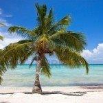 Cheap flights from Brussels to Punta Cana from €396 return!