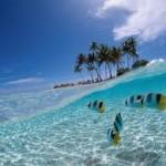 Cheap flights to Seychelles