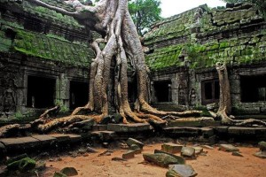 Cambodia Top exotic destinations you can afford!