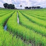 Flights to Ho Chi Minh City in Vietnam from €412!