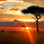 Cheap return flights to Nairobi, Kenya from UK from Ł271!