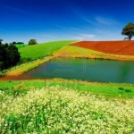 Cheap flights from Germany to Tasmania from €605!
