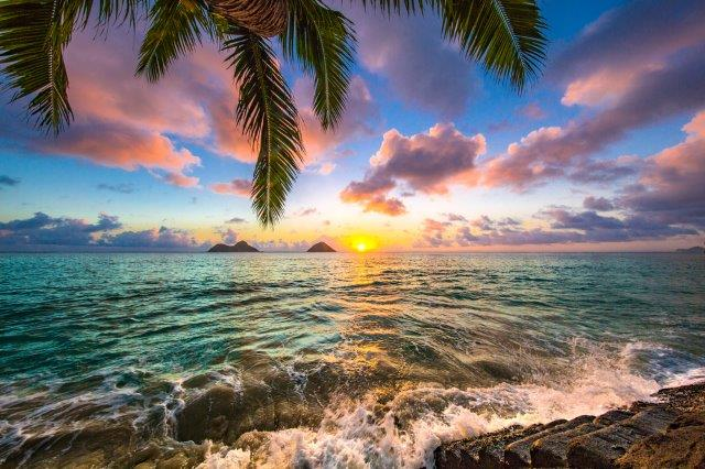 Cheap return flights from Switzerland to Hawaii for €334!