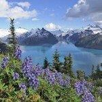British Airways cheap non-stop flights from London to Vancouver £355!