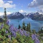 Cheap return flights from Europe to Vancouver from €300!