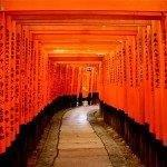 5* ANA / Lufthansa flights from Europe to Japan from €421 return!
