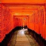 Super cheap return flights to Japan / South Korea from Paris €274 or Frankfurt €316!
