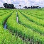 Cheap return and open-jaw flights from Switzerland to Vietnam from €360!