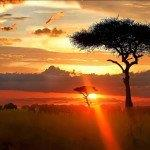 Cheap return flights from Switzerland to Windhoek, Namibia from €385!