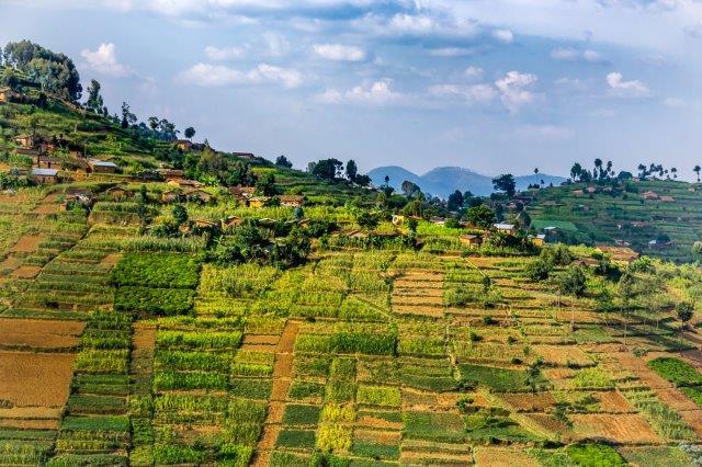 Return flights from main airports in the UK to Kigali, Rwanda from £347!