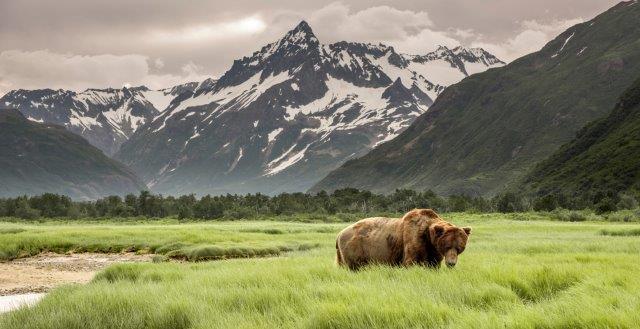 Return flights from Dublin to Alaska (Anchorage, Ketchikan, Juneau) from €508!