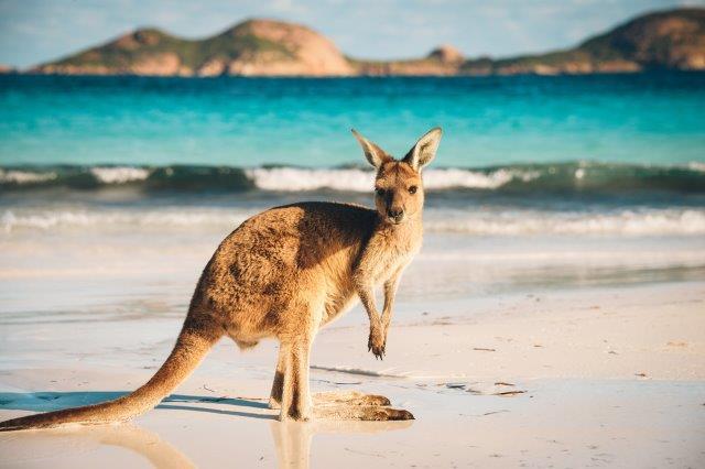 5* Lufthansa / ANA flights from London to Sydney orf Brisbane, Australia for £523!