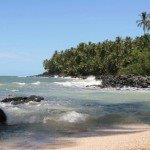 Air France non-stop AND full-service flights from Paris to Cayenne, French Guiana from €382!