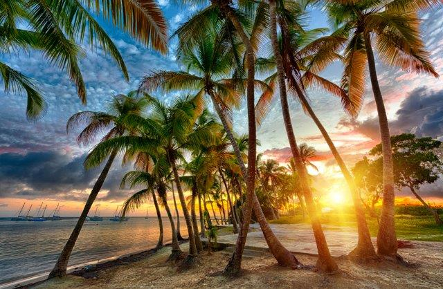 Cheap flights from Paris to Martinique or Guadeloupe from €233!