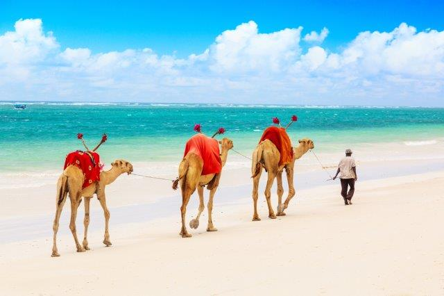 Qatar Airways flights from Italy to Mombasa, beachside in Kenya, from €389 return!
