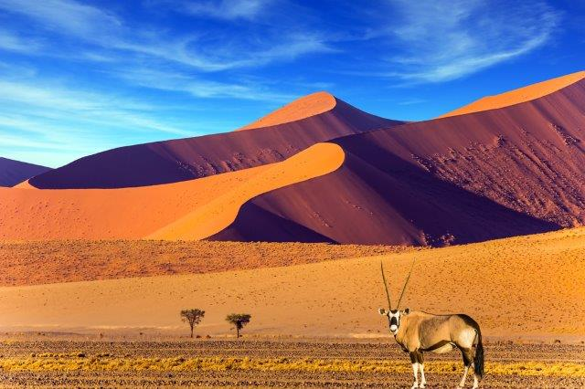 Qatar Airways flights from Vienna to Windhoek, Namibia from €460!