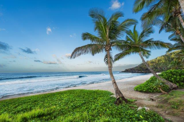 Return flights from main airports in Spain to tropical Réunion for €532!