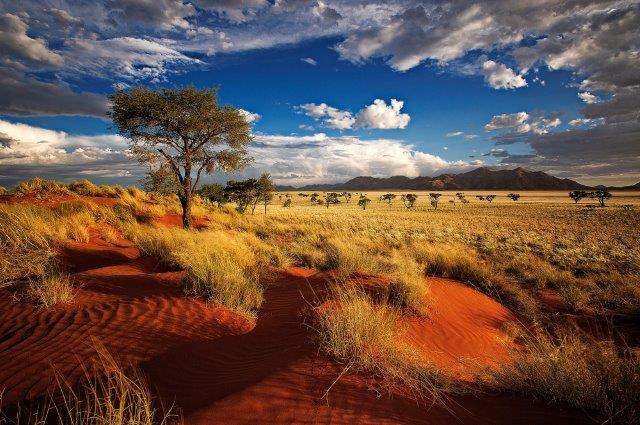 Qatar Airways return flights to Windhoek, Namibia from Italy from €407!